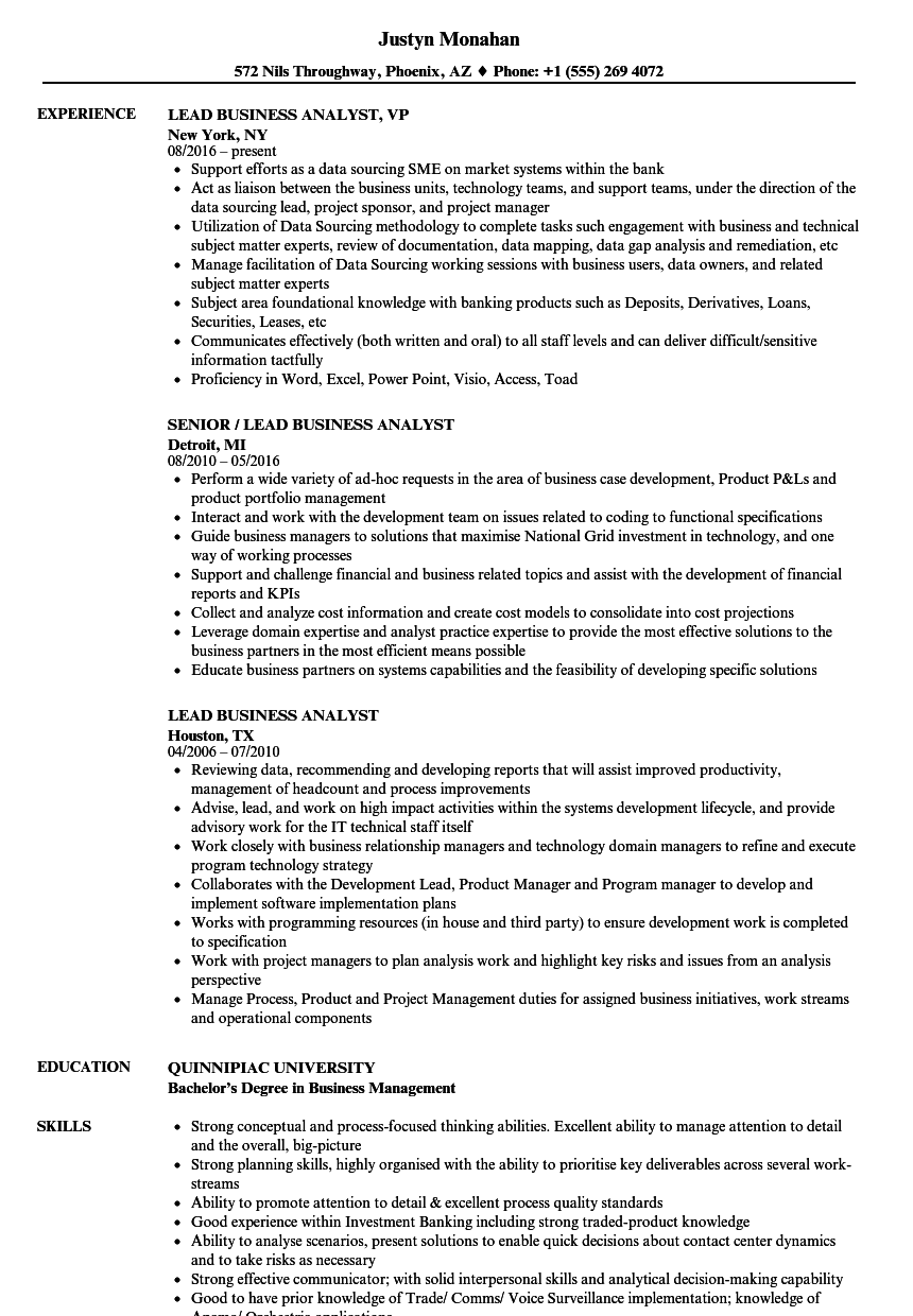 Lead Business Analyst Resume Samples | Velvet Jobs