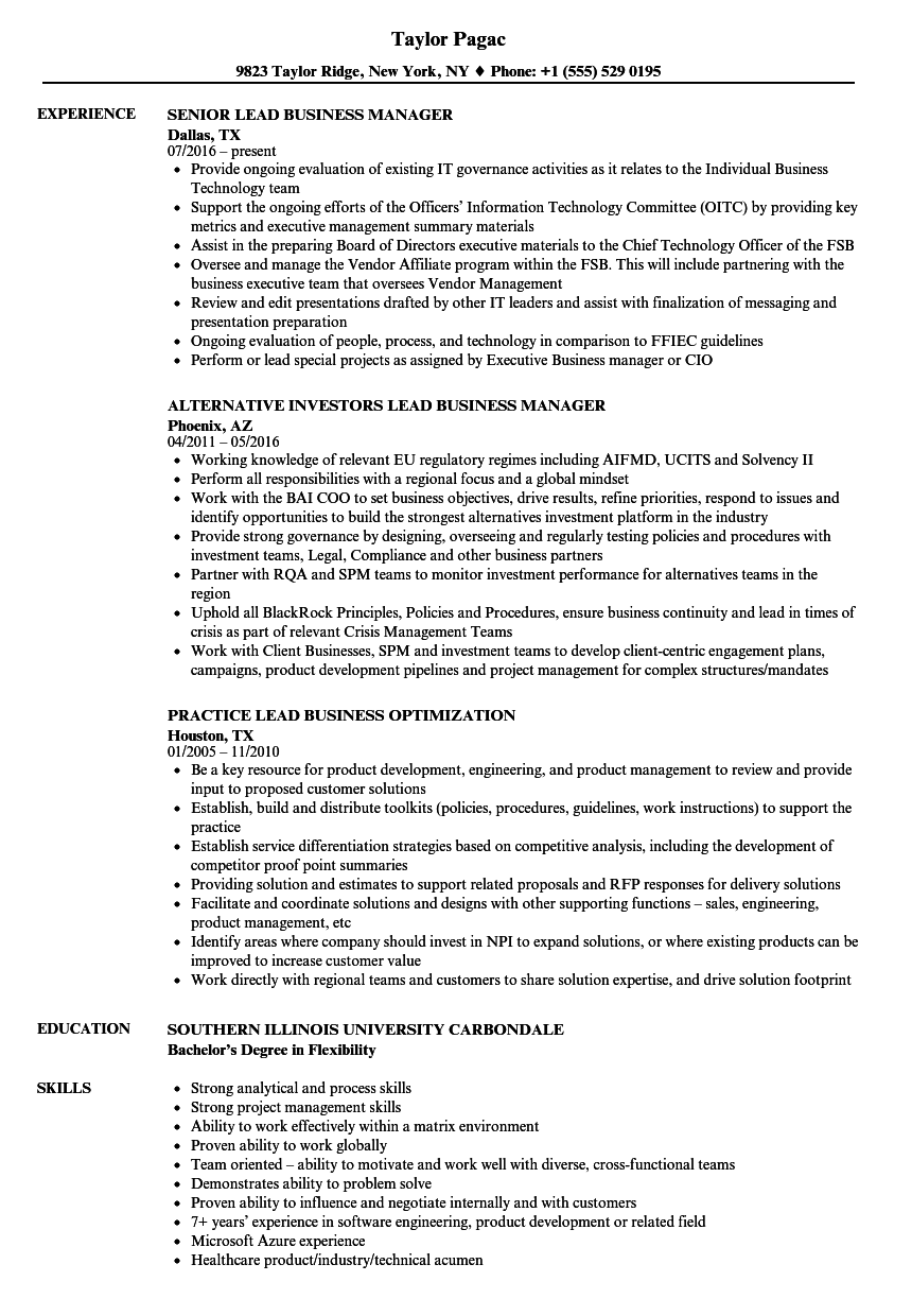 download lead business resume sample as image file - Business Resume Examples