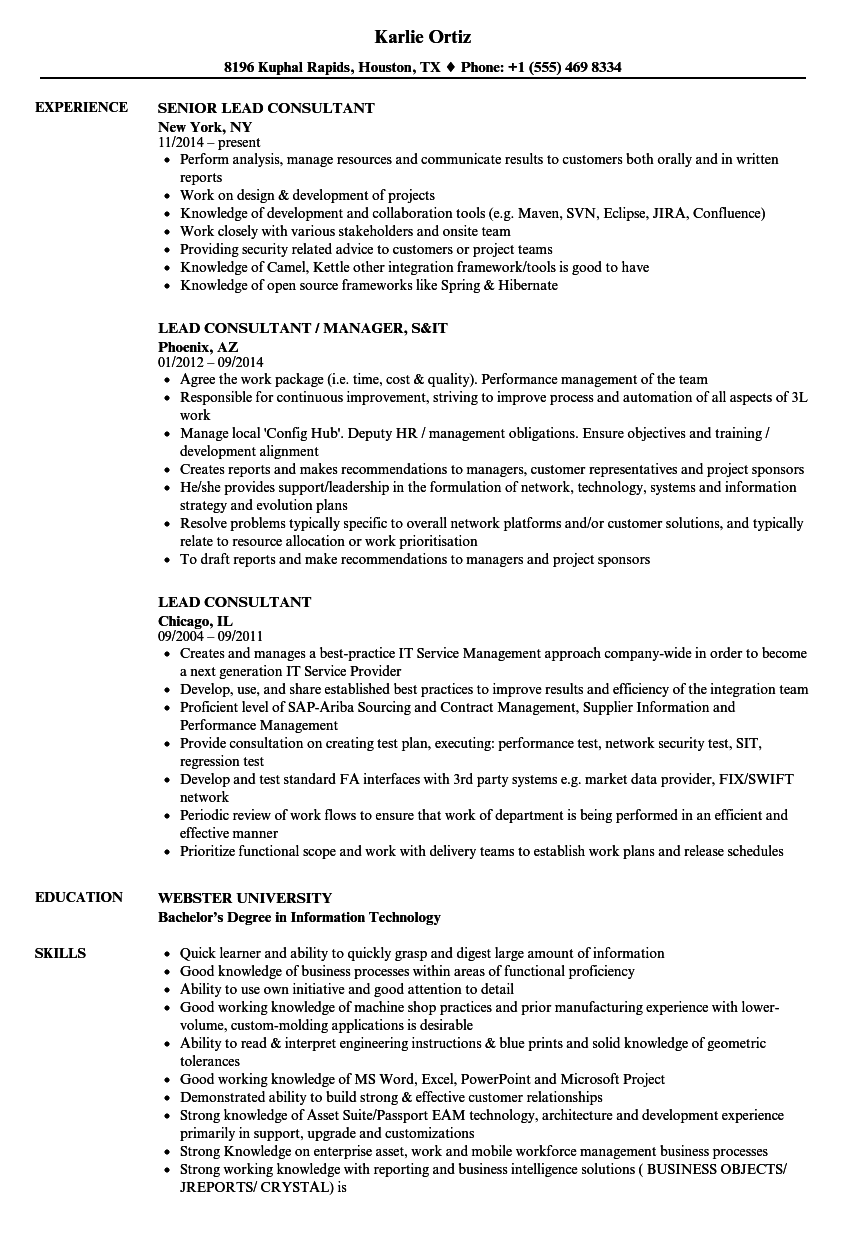 Lead Consultant Resume Samples | Velvet Jobs