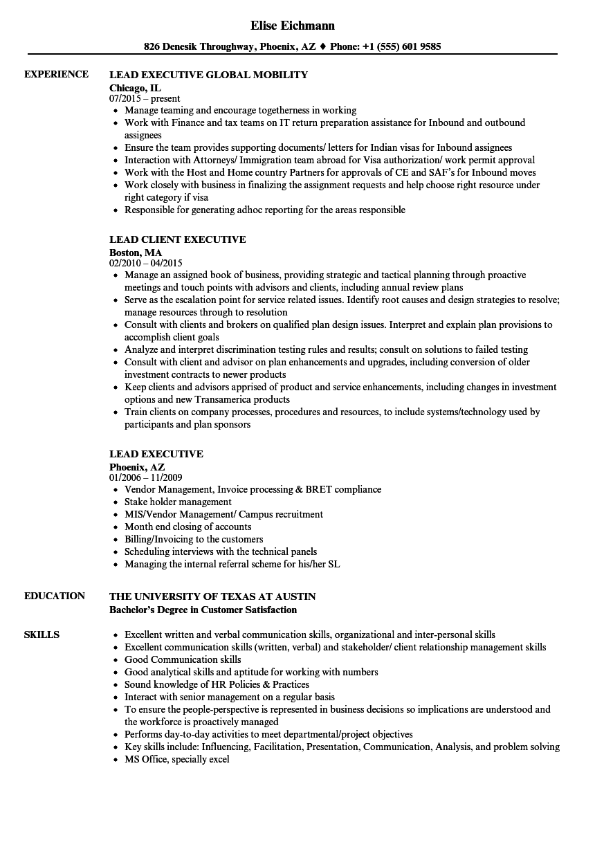 Lead Executive Resume Samples   Velvet Jobs