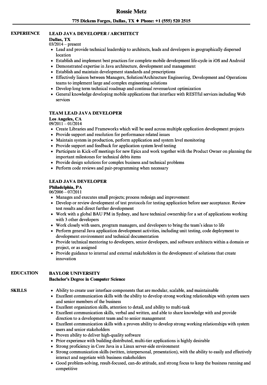 lead java developer resume samples