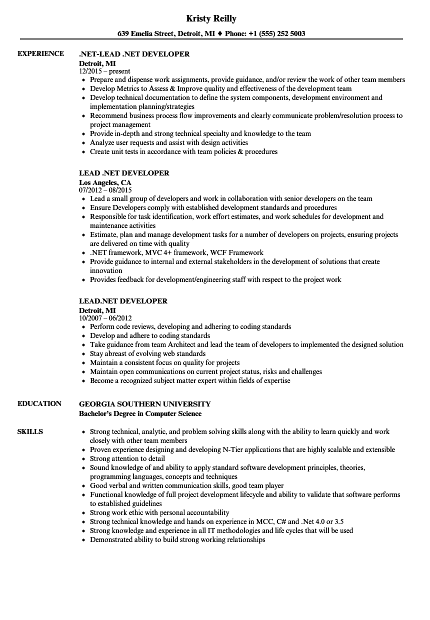 Lead .NET Developer Resume Samples | Velvet Jobs