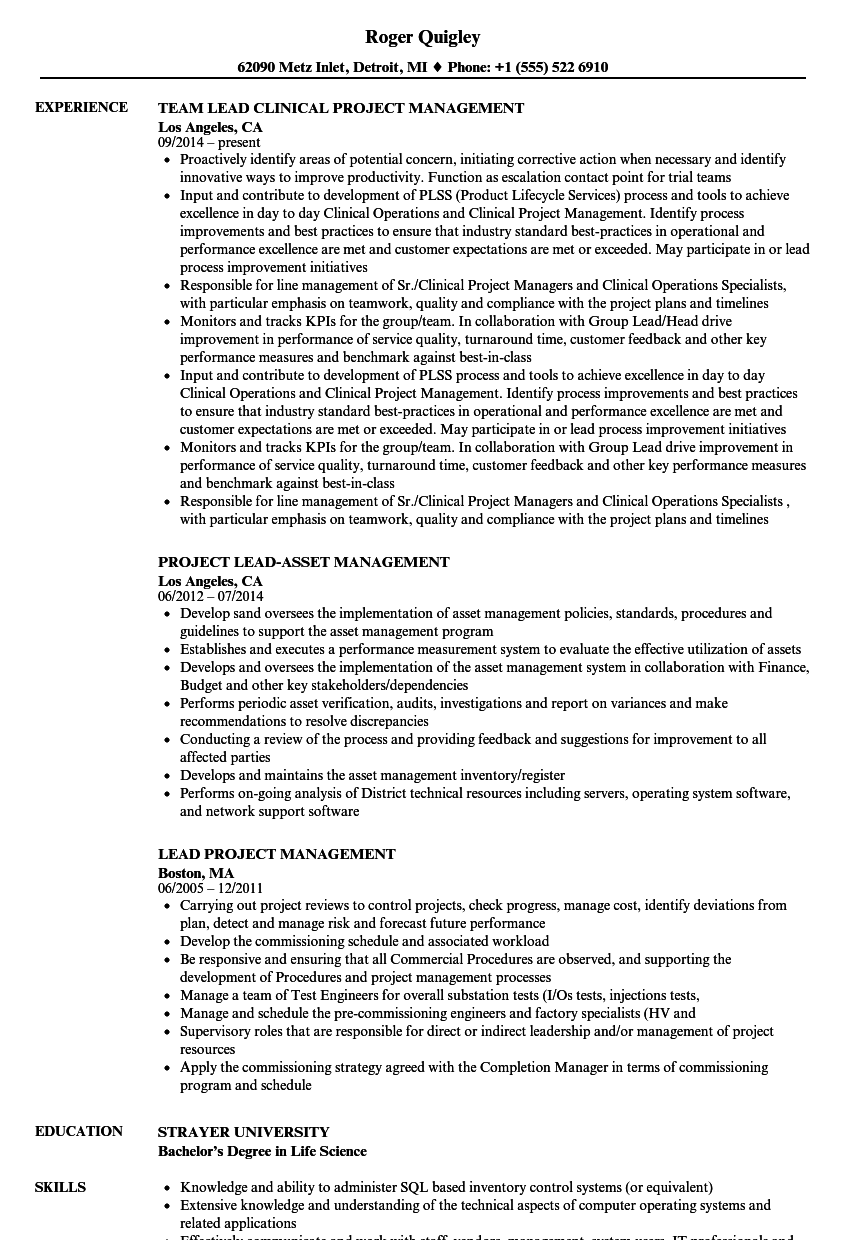 lead project management resume samples