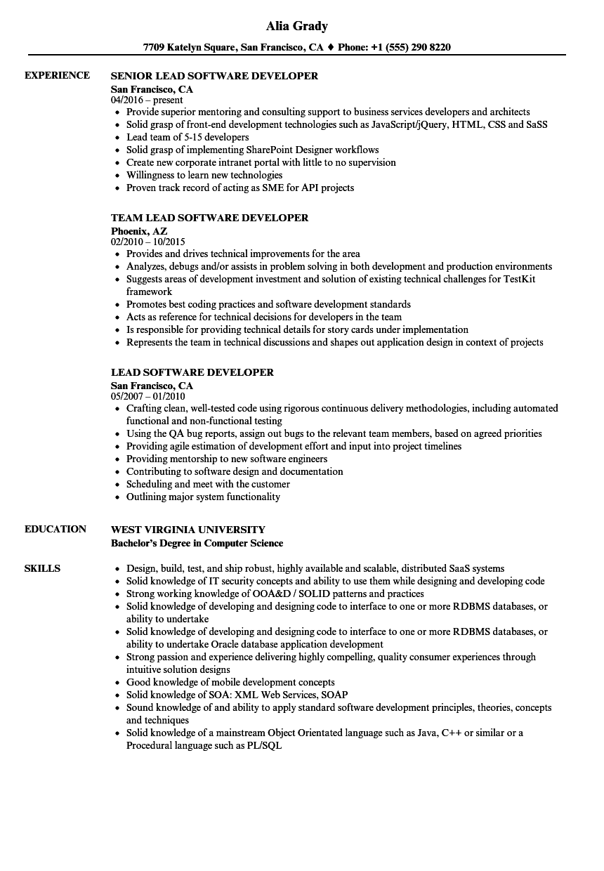 Download Lead Software Developer Resume Sample As Image File