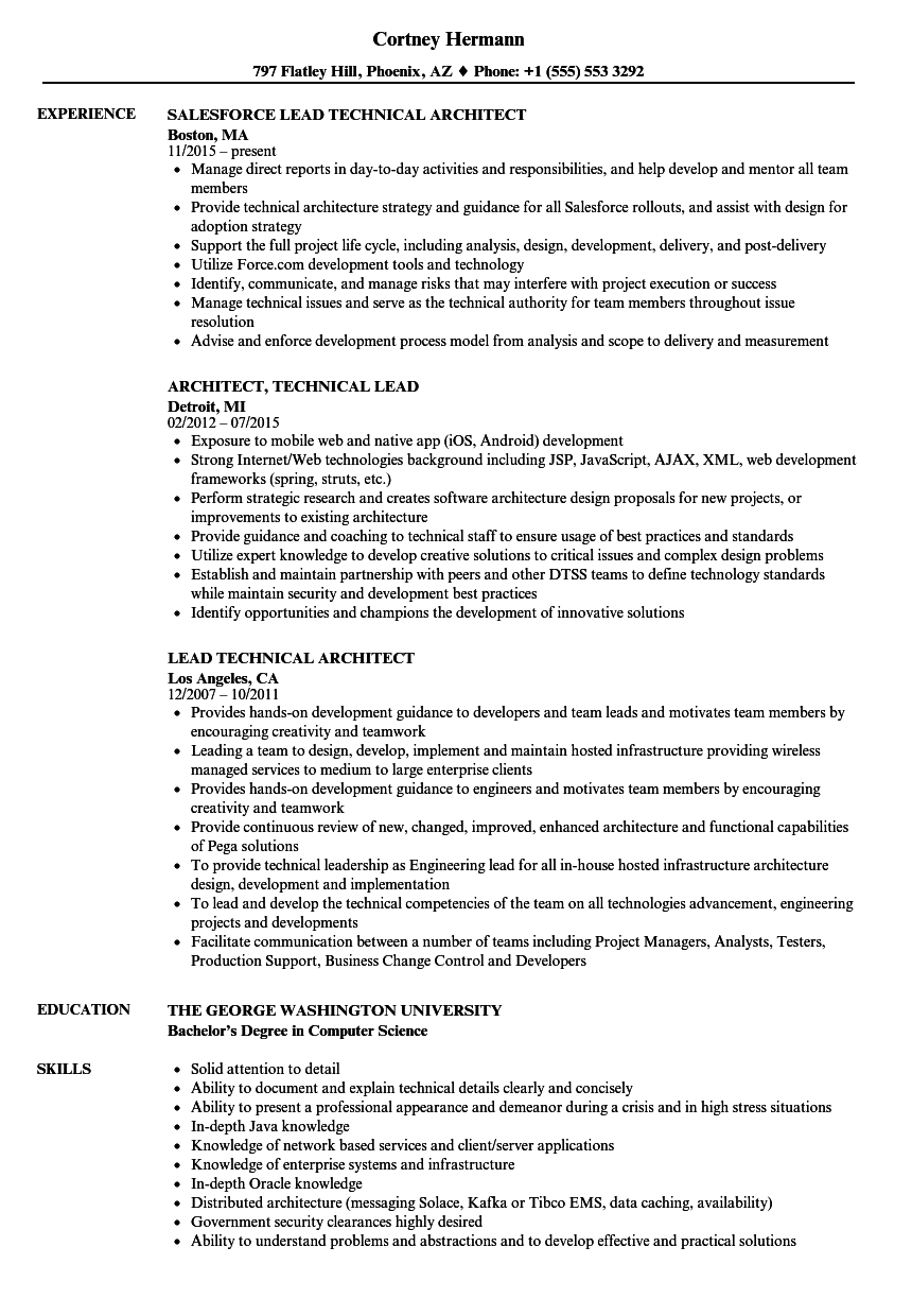 lead technical architect resume samples