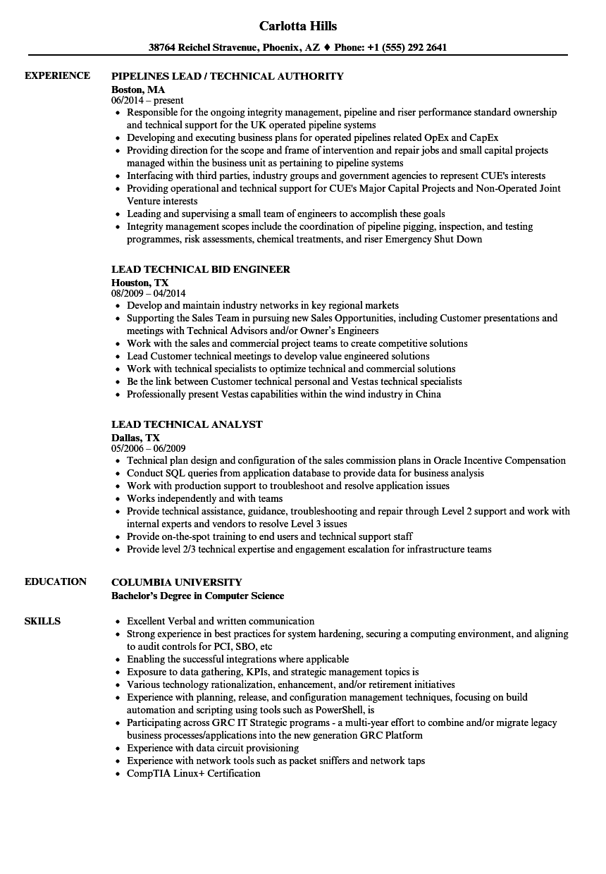 lead technical resume samples