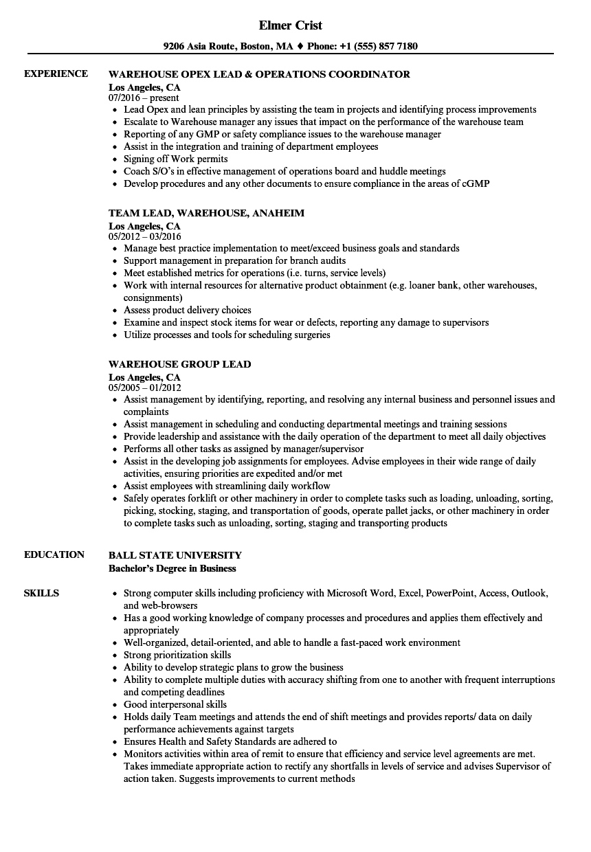 Lead Warehouse Resume Samples Velvet Jobs