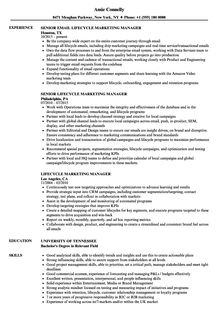 Download Lifecycle Marketing Manager Resume Sample As Image File  Resume Marketing Manager