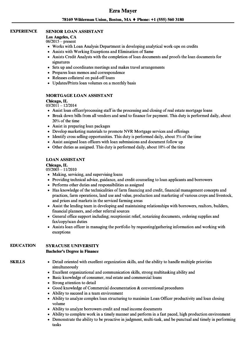 Download Loan Assistant Resume Sample As Image File