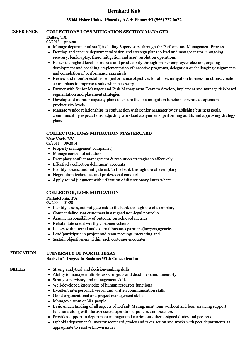 loss mitigation resume samples