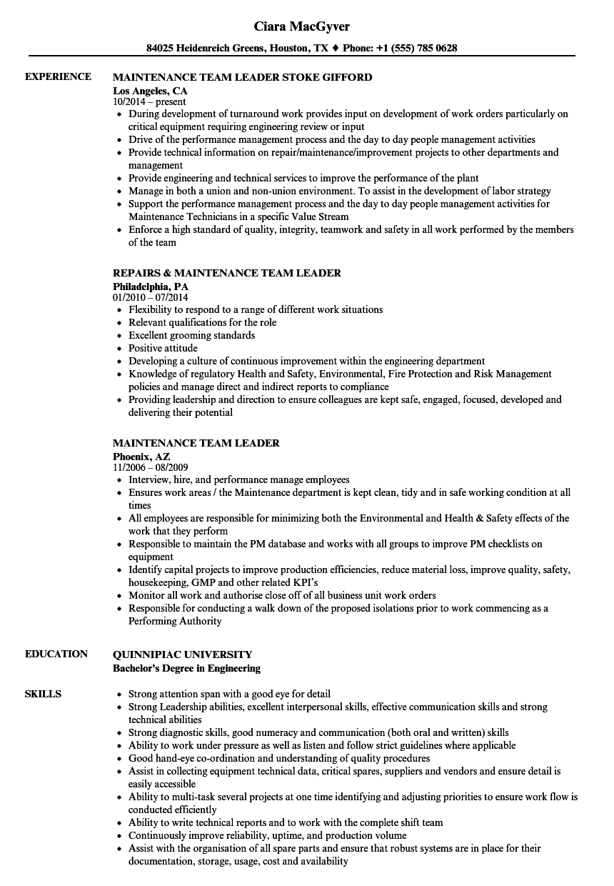 Maintenance Team Leader Resume Samples | Velvet Jobs