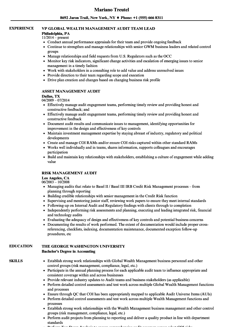 Management Audit Resume Samples Velvet Jobs