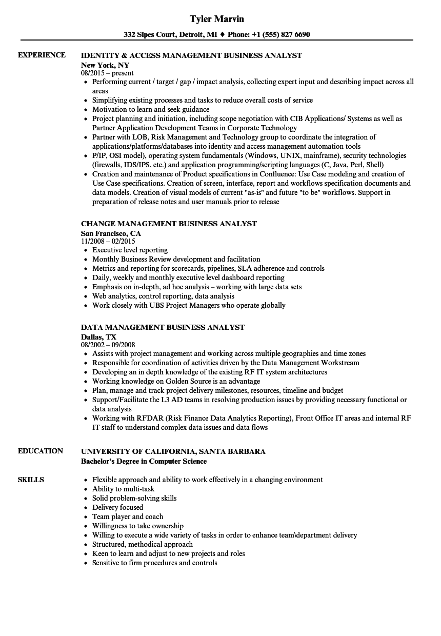 download management business analyst resume sample as image file