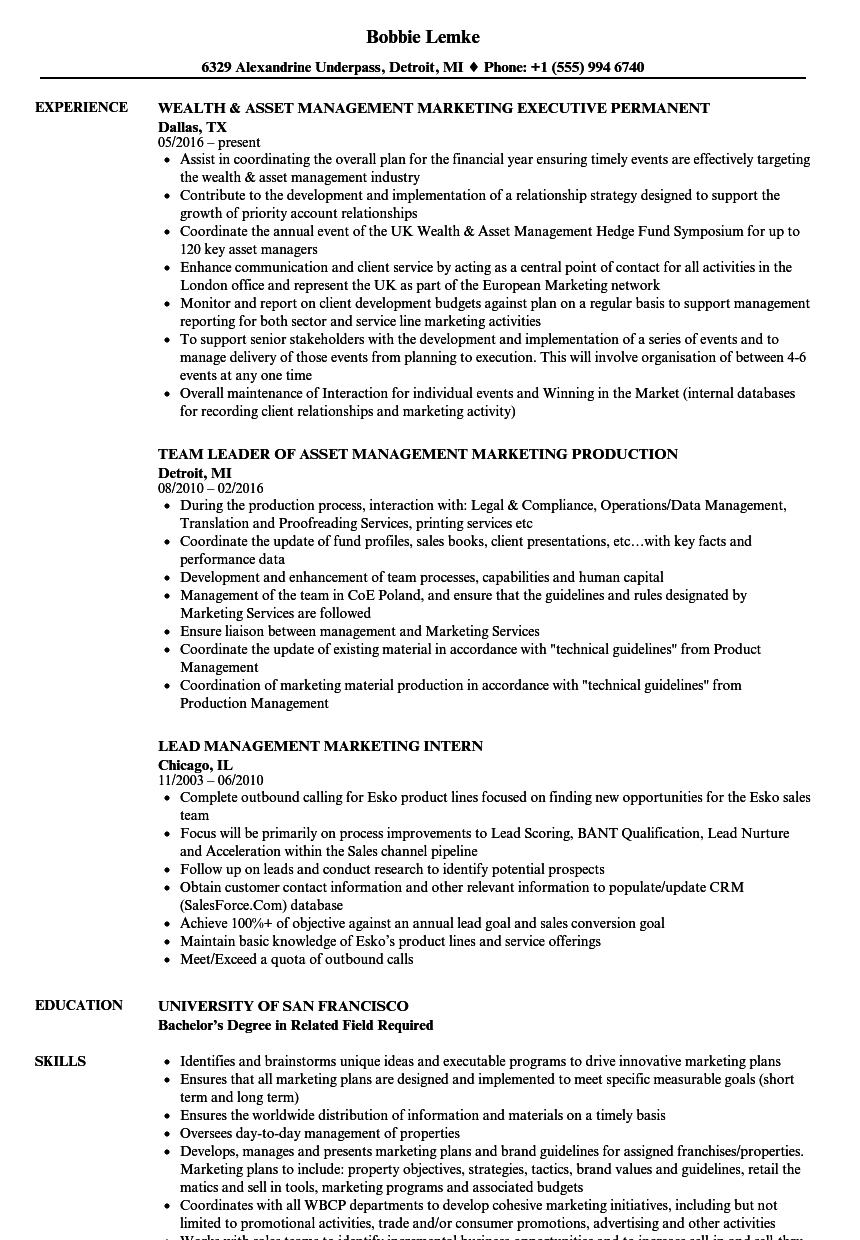 Management Marketing Resume Samples Velvet Jobs