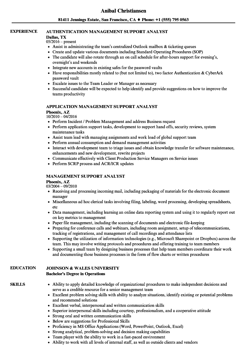 Management Support Analyst Resume