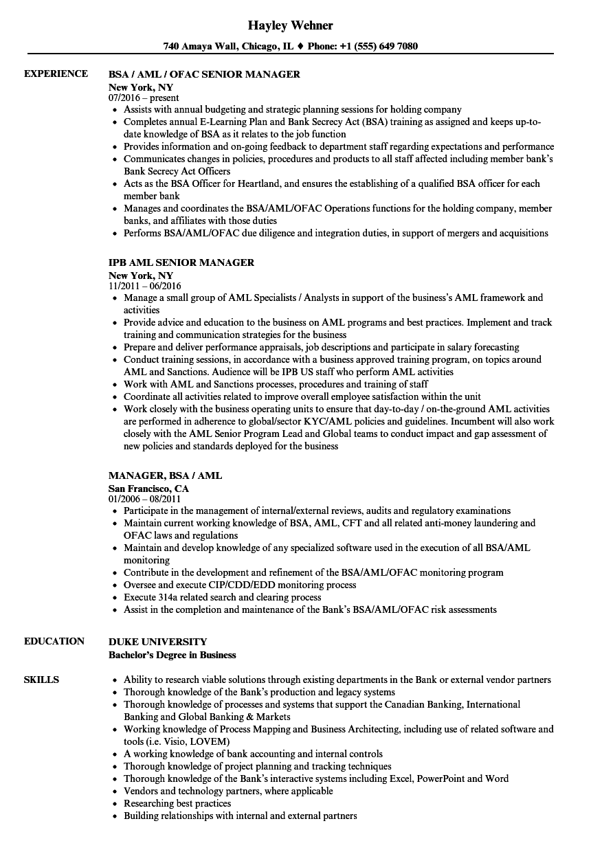 Manager Aml Resume Samples Velvet Jobs