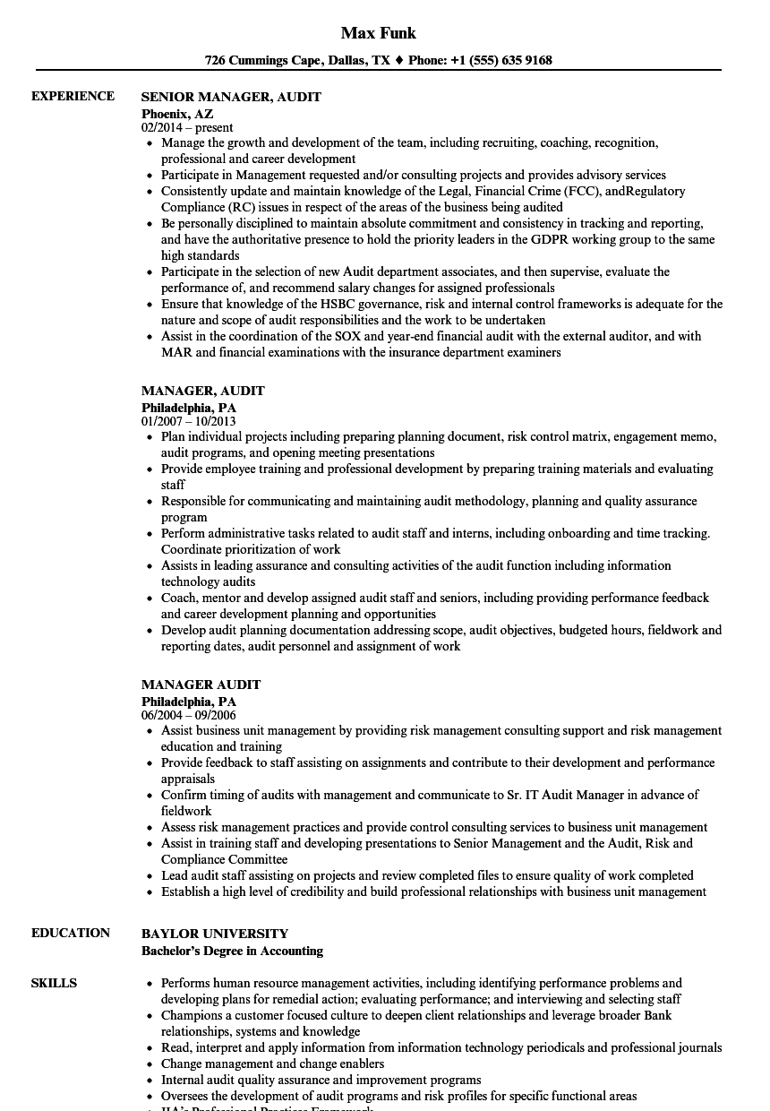 manager  audit resume samples