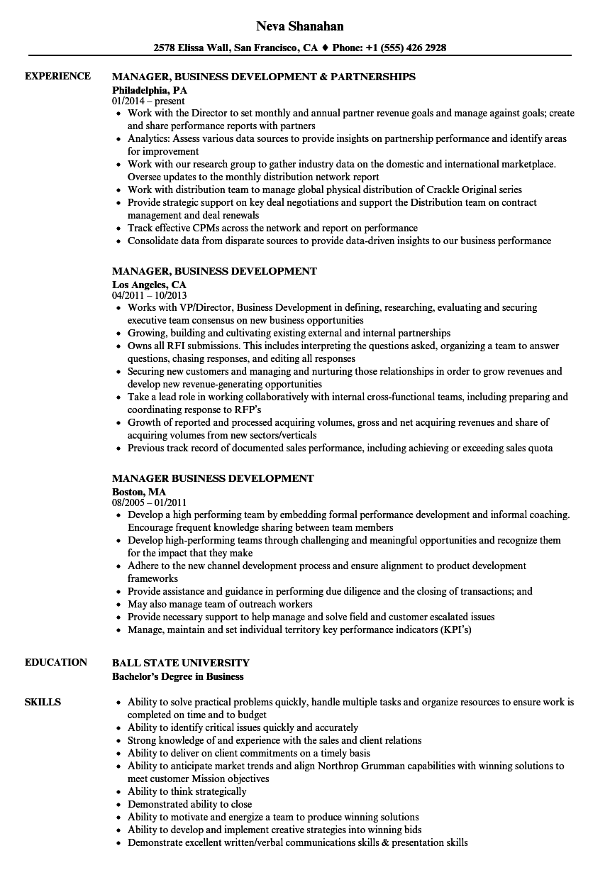 manager business development resume samples