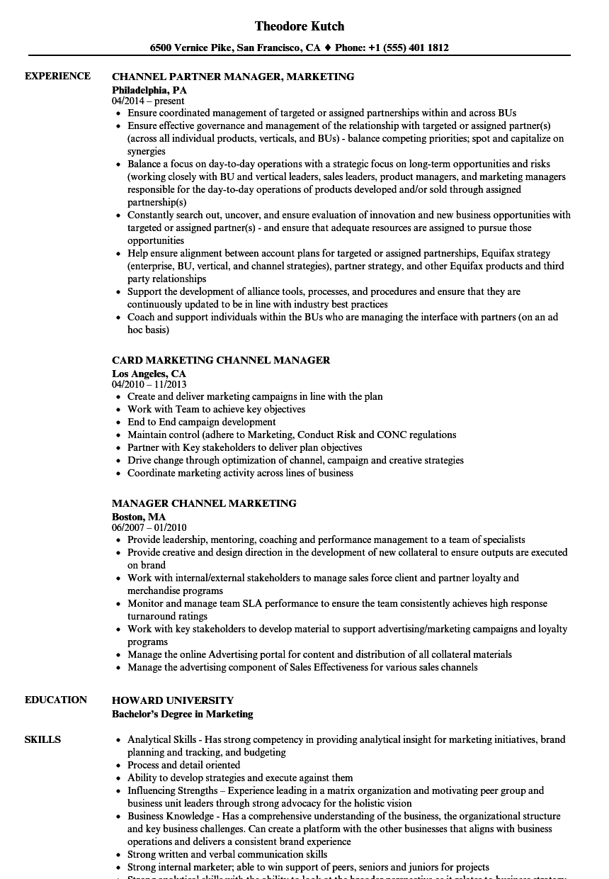 Manager Channel Marketing Resume Samples Velvet Jobs
