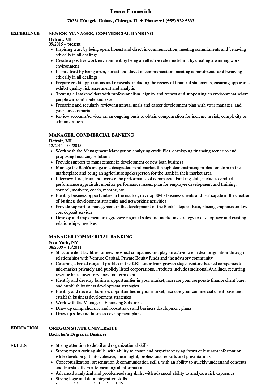 Download Manager, Commercial Banking Resume Sample As Image File  Business Banker Resume