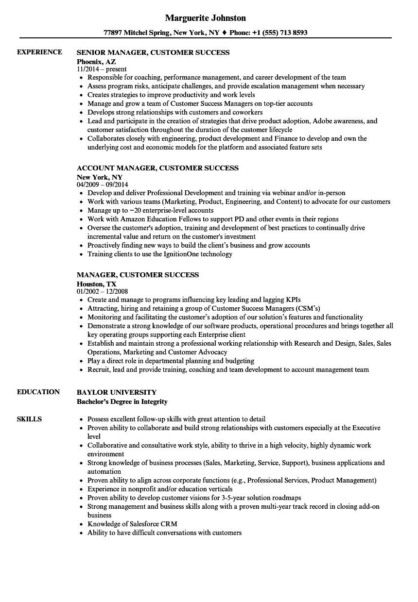 Download Manager Customer Success Resume Sample As Image File