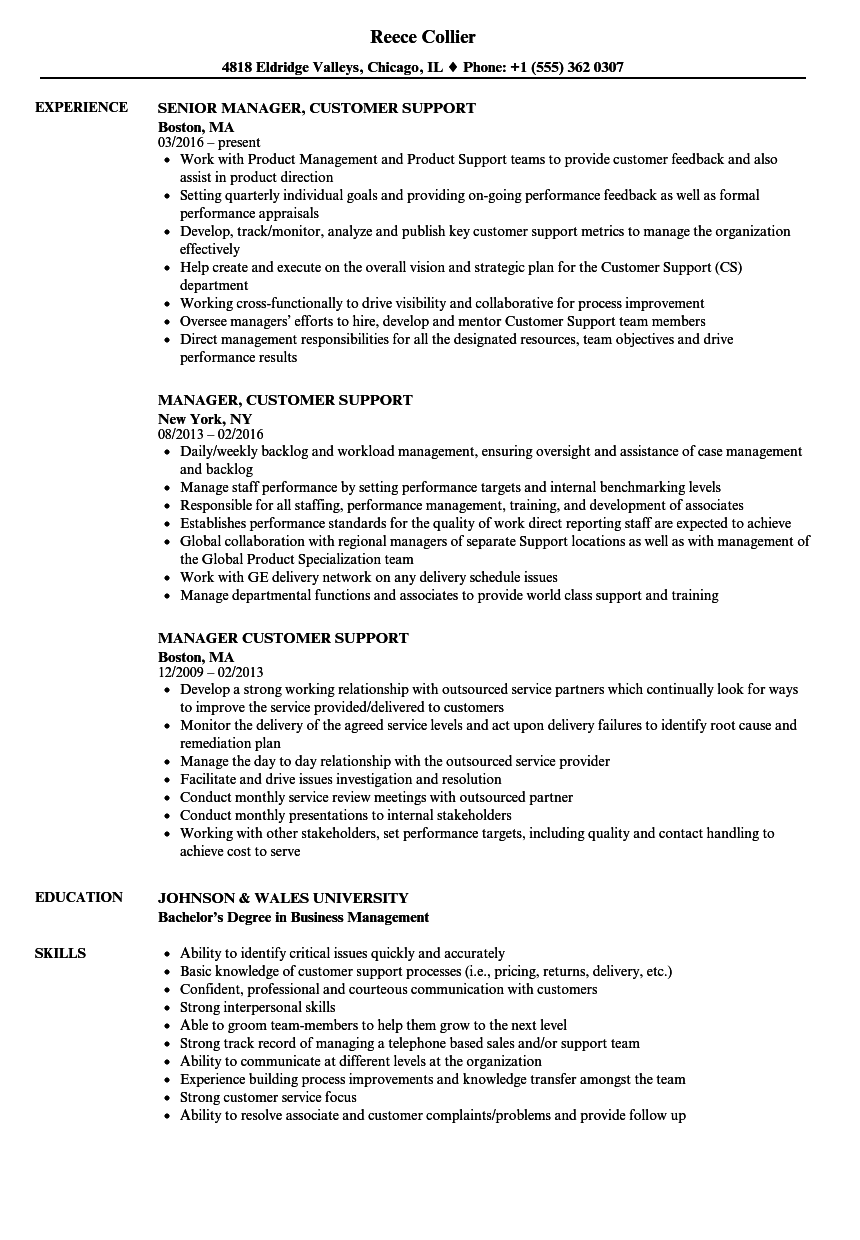download manager customer support resume sample as image file - Support Resume Examples