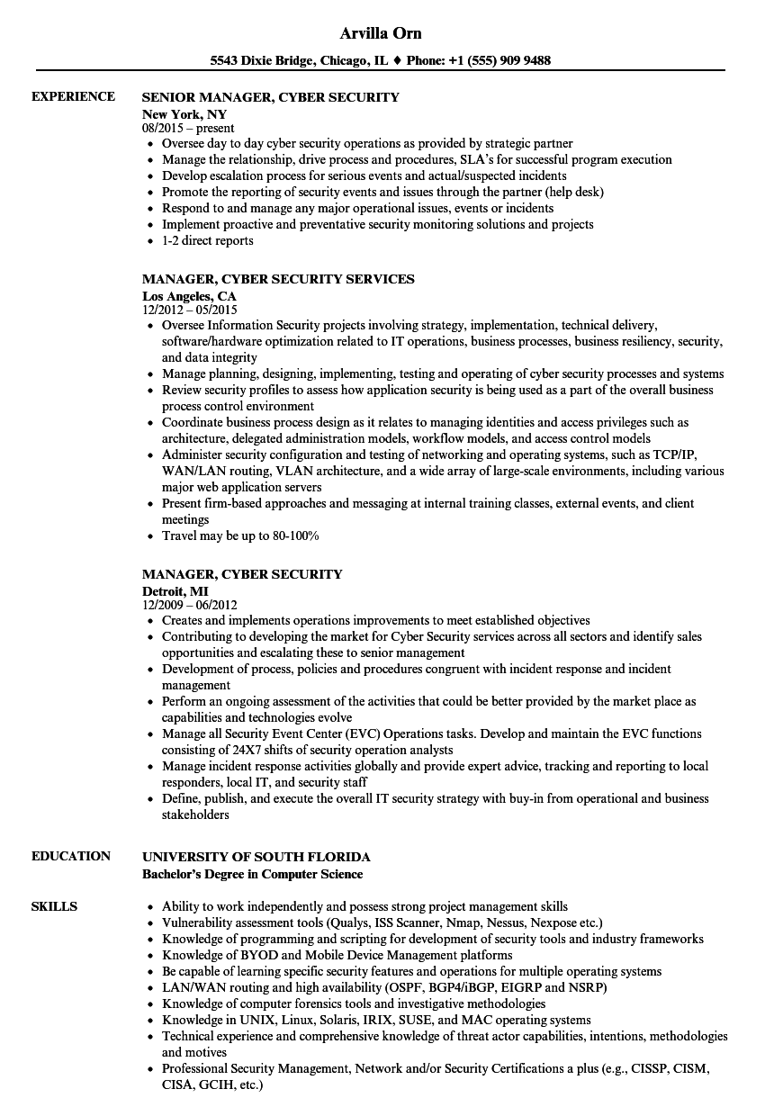 Manager Cyber Security Resume Samples Velvet Jobs