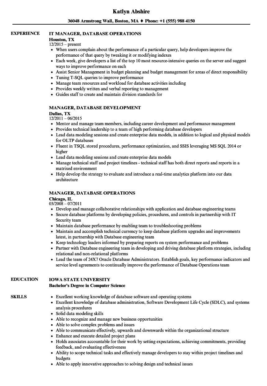manager database resume samples  velvet jobs