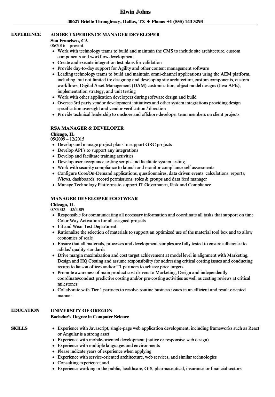 manager  developer resume samples