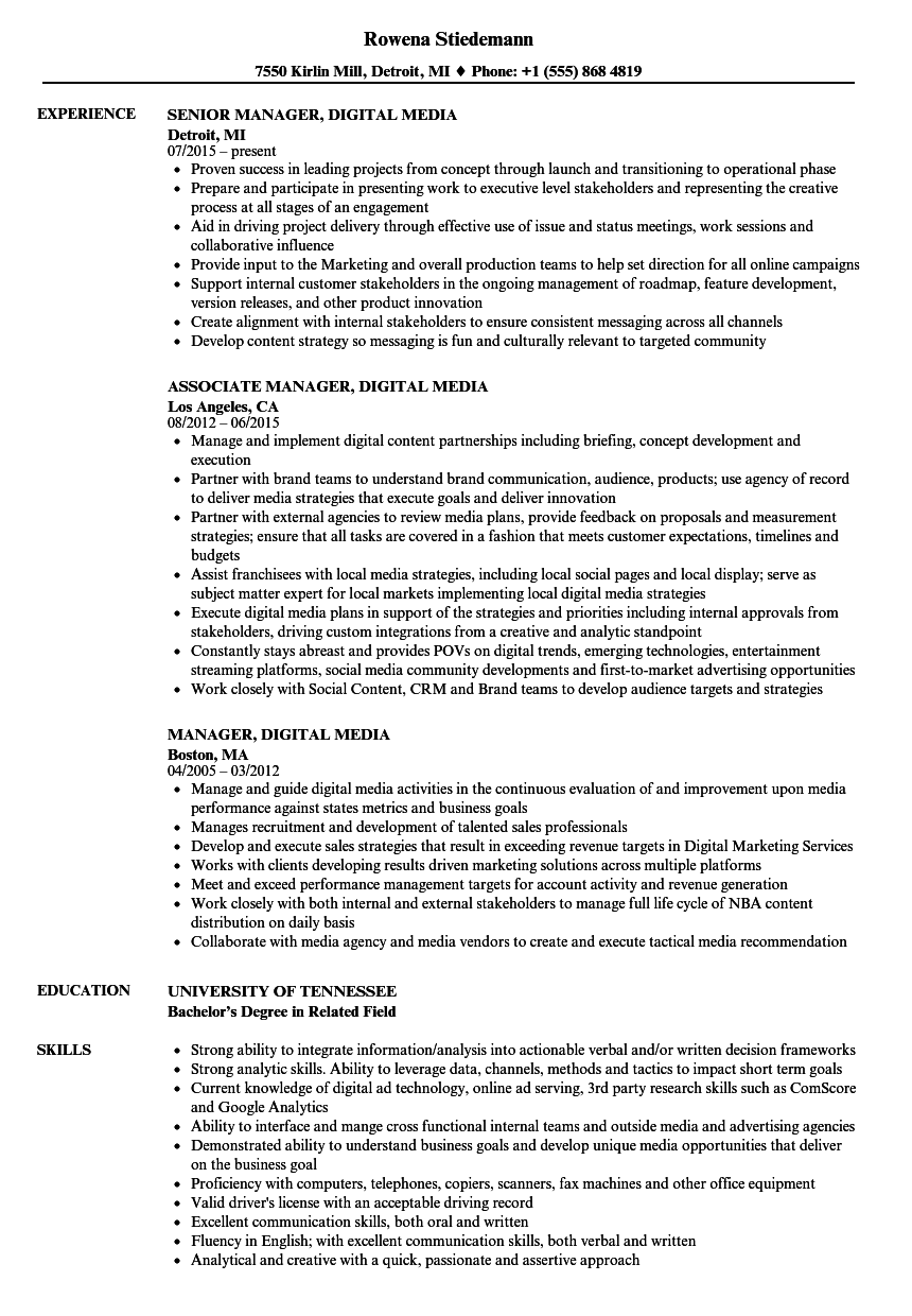 manager  digital media resume samples