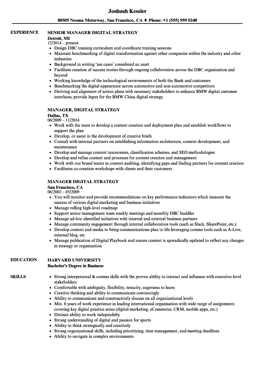 manager  digital strategy resume samples