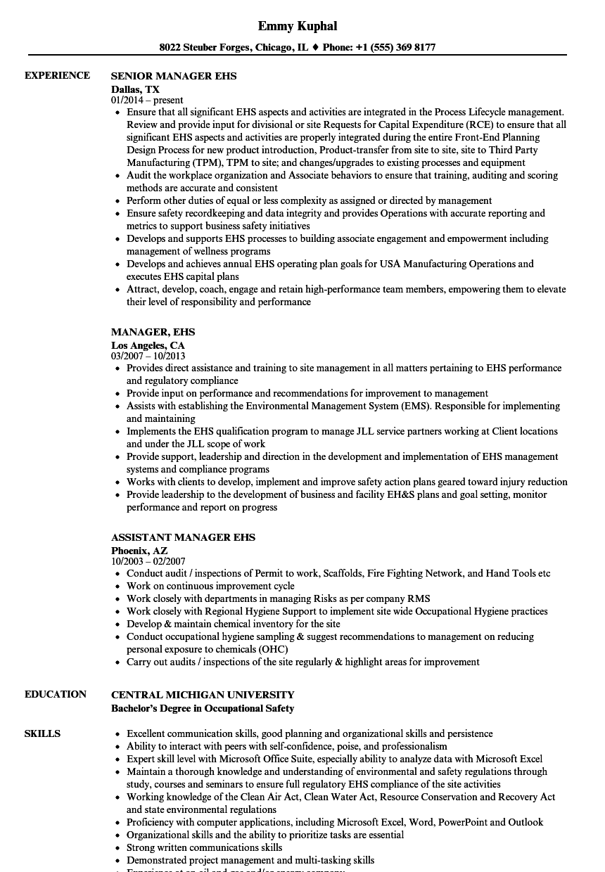 Generous Ehs Executive Resume Examples Contemporary - Example ...
