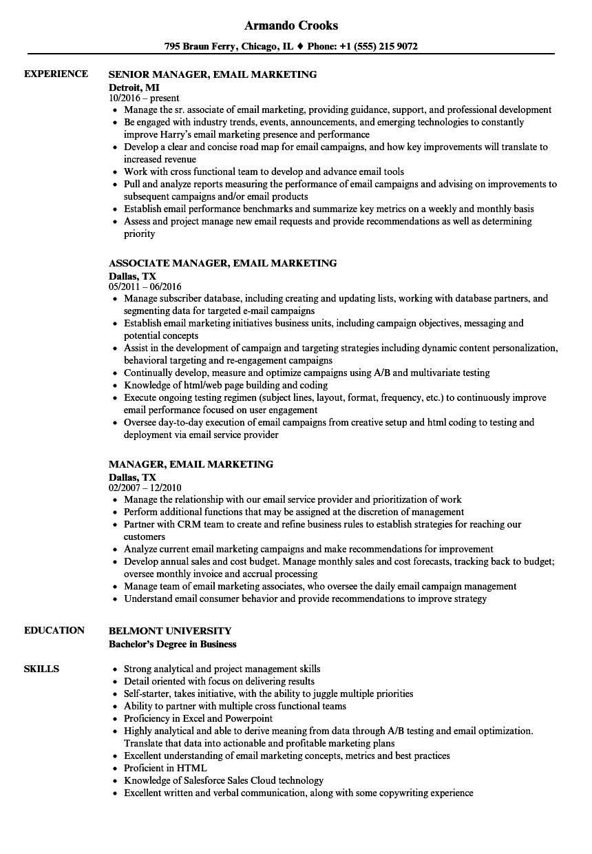 Manager, Email Marketing Resume Samples | Velvet Jobs
