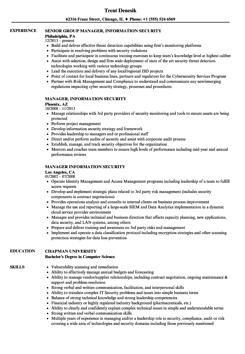 manager  information security resume samples
