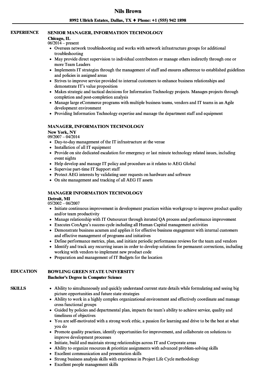 manager  information technology resume samples