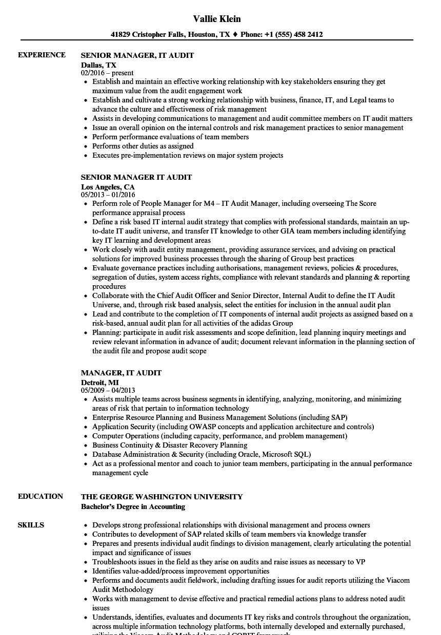 Manager It Audit Resume Samples Velvet Jobs