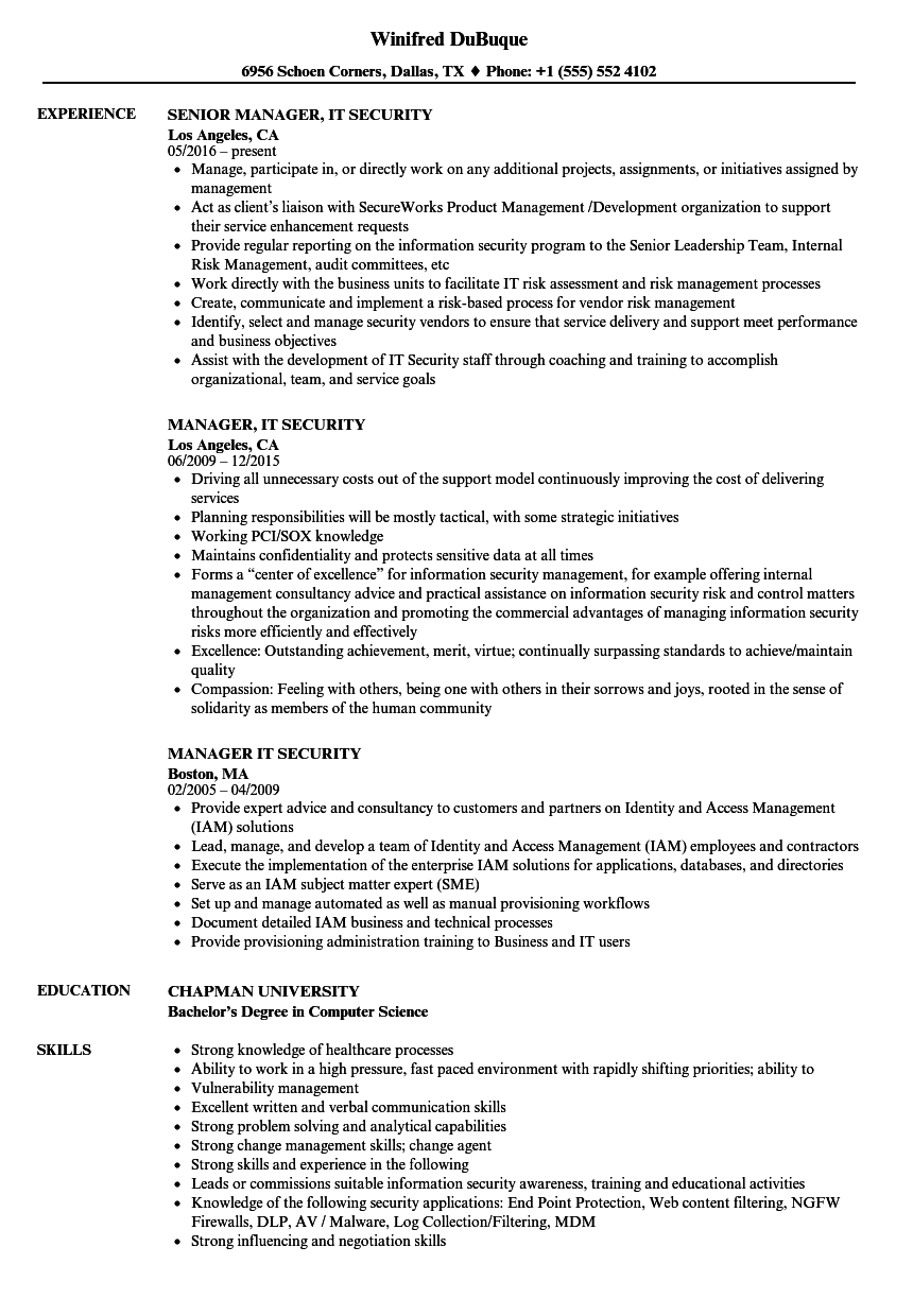 download manager it security resume sample as image file - It Security Resume