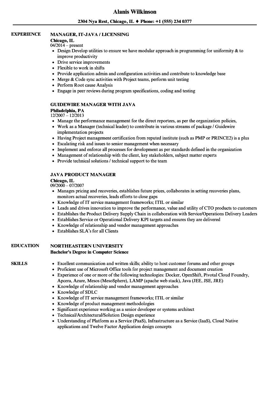 manager java resume samples