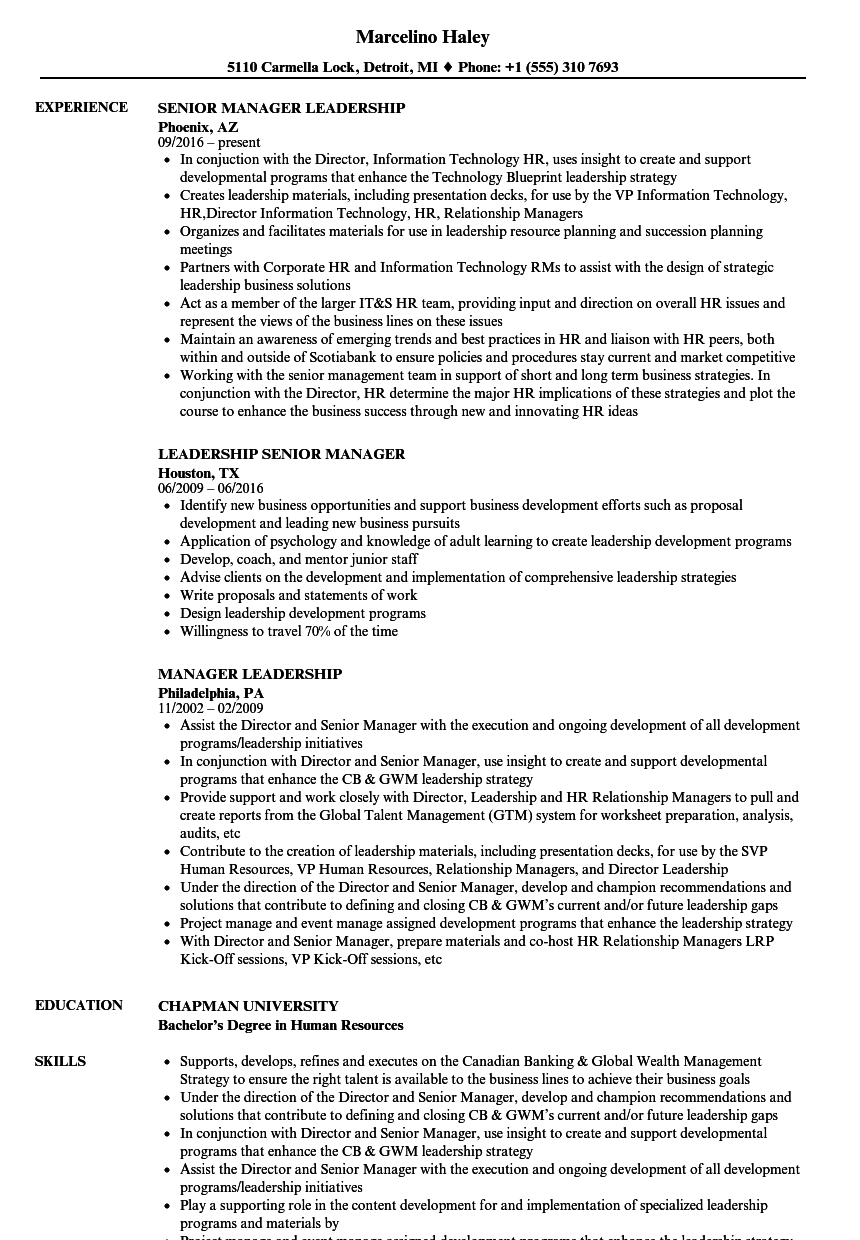 Download Manager Leadership Resume Sample As Image File