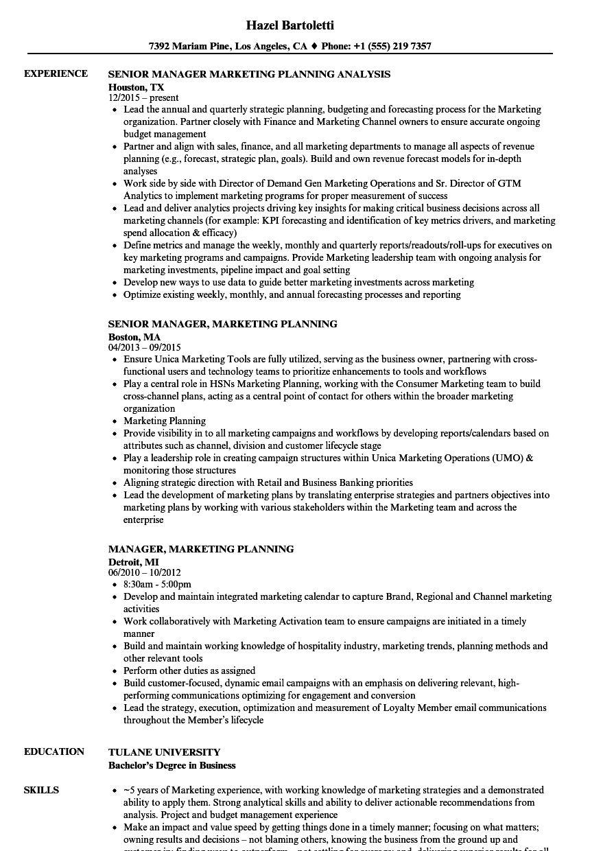 tax manager resume - Etame.mibawa.co