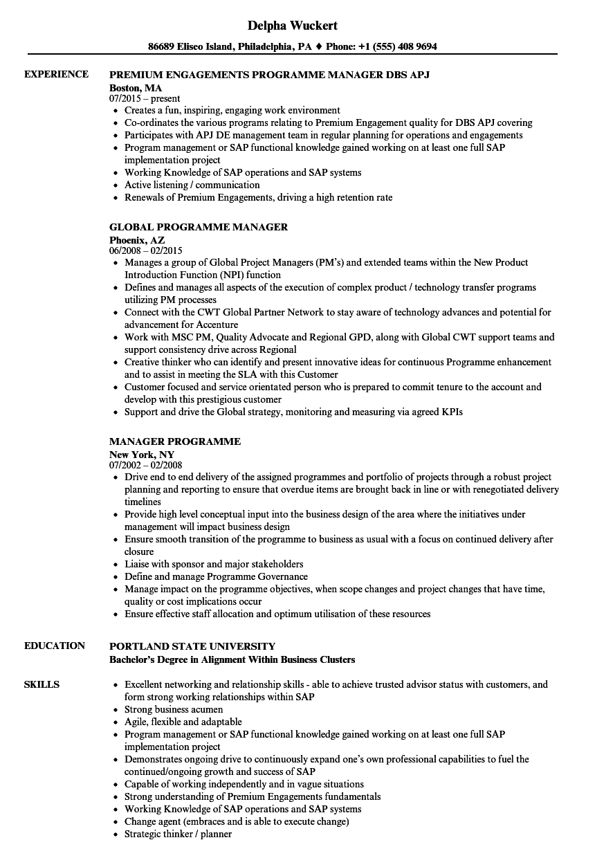 manager programme resume samples