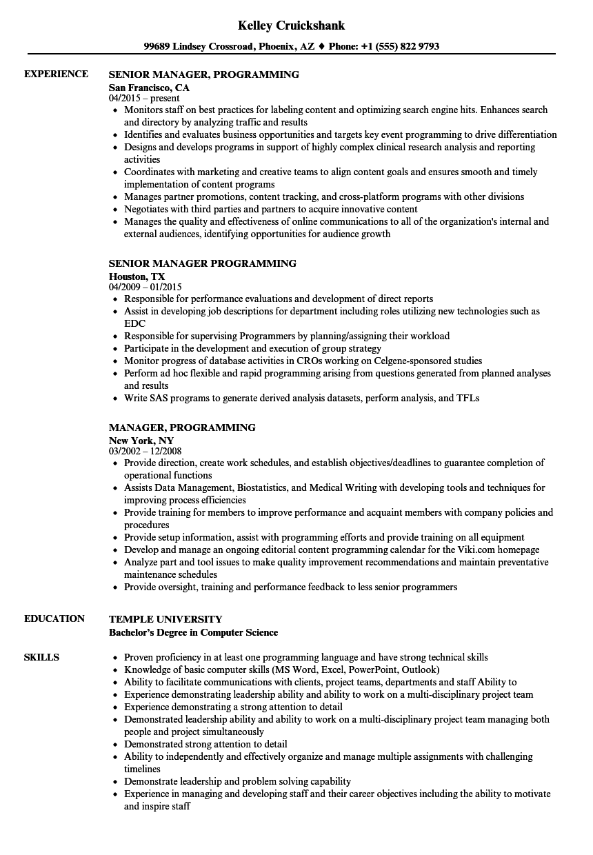 Manager Programming Resume Samples Velvet Jobs