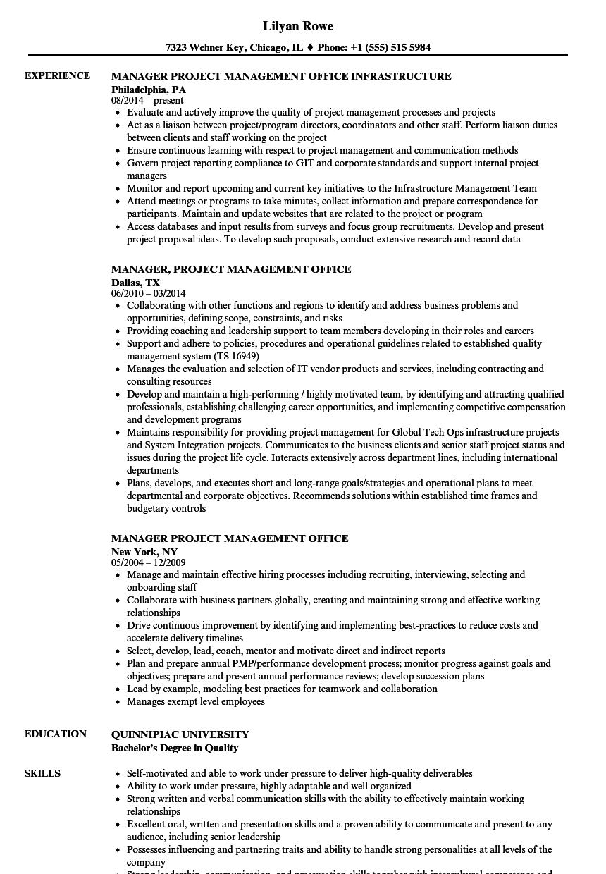 manager  project management office resume samples