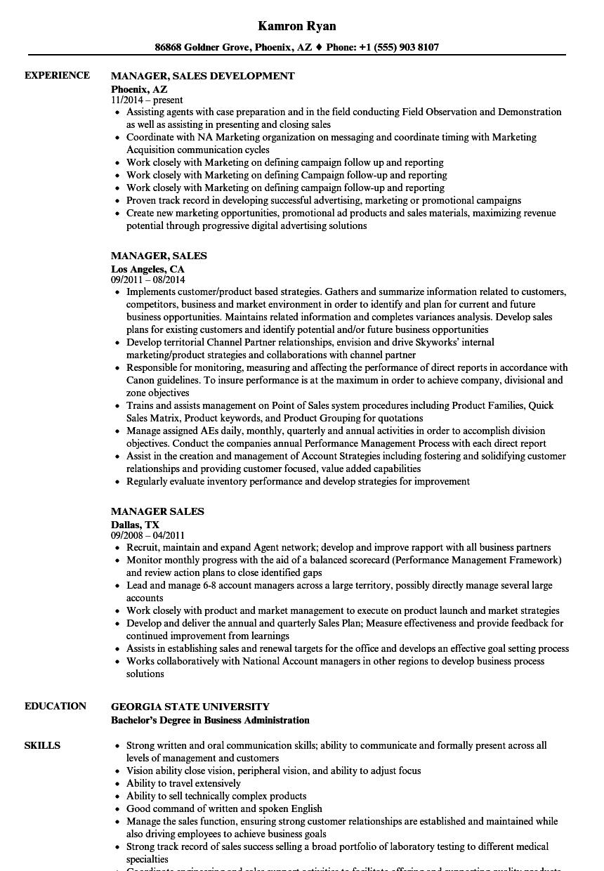 manager  sales resume samples