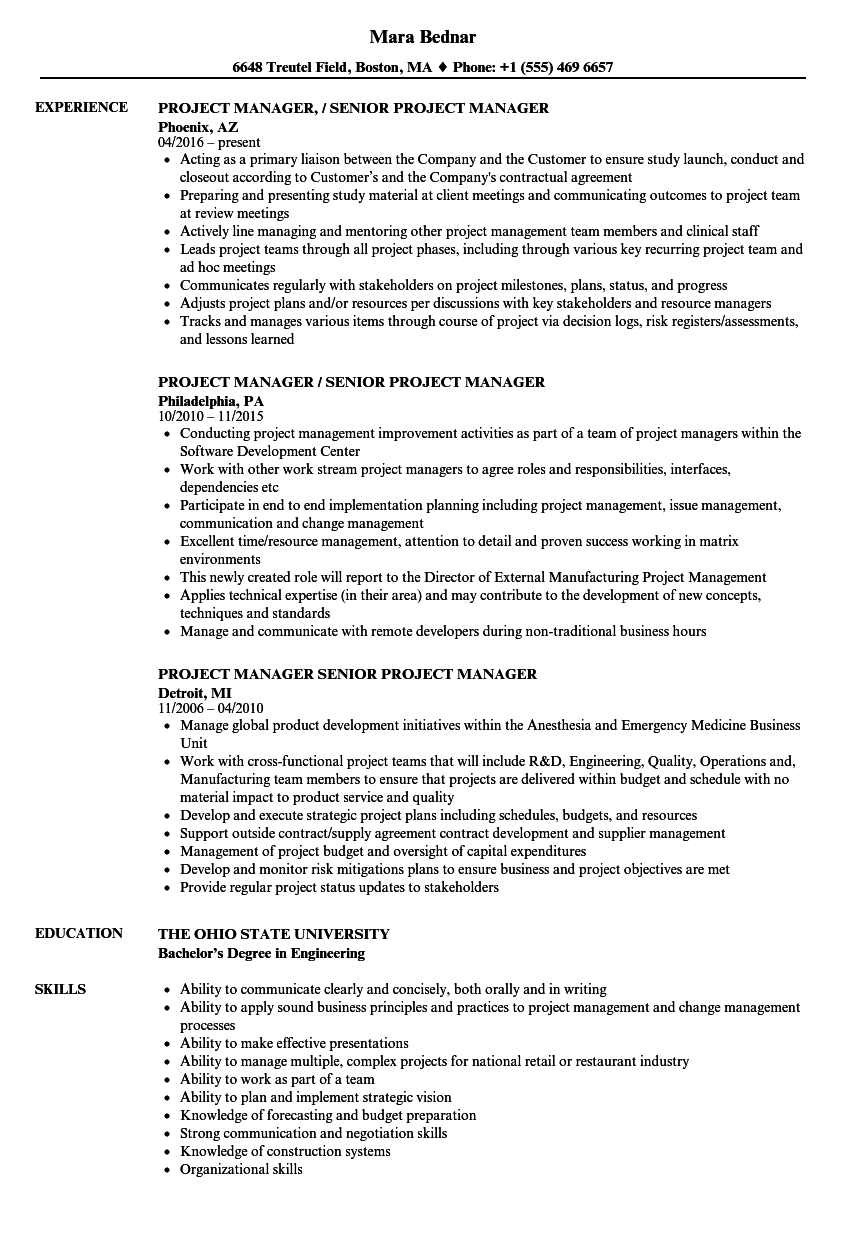 Manager, Senior Project Manager Resume Samples | Velvet Jobs