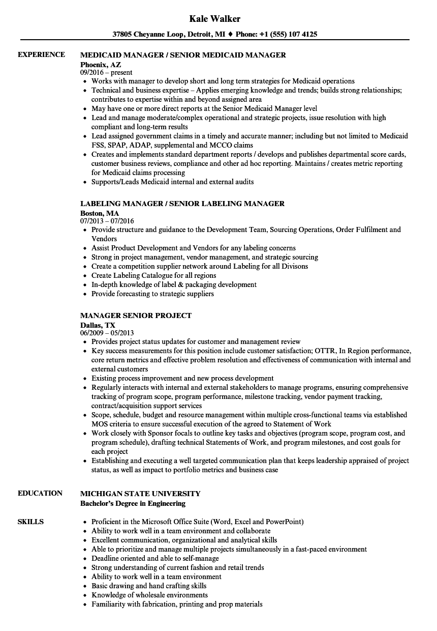 Manager, Senior Resume Samples | Velvet Jobs