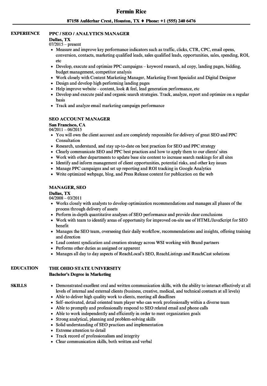 manager seo resume samples velvet jobs
