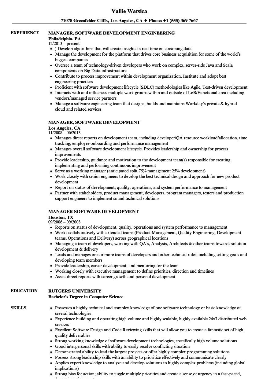 manager  software development resume samples