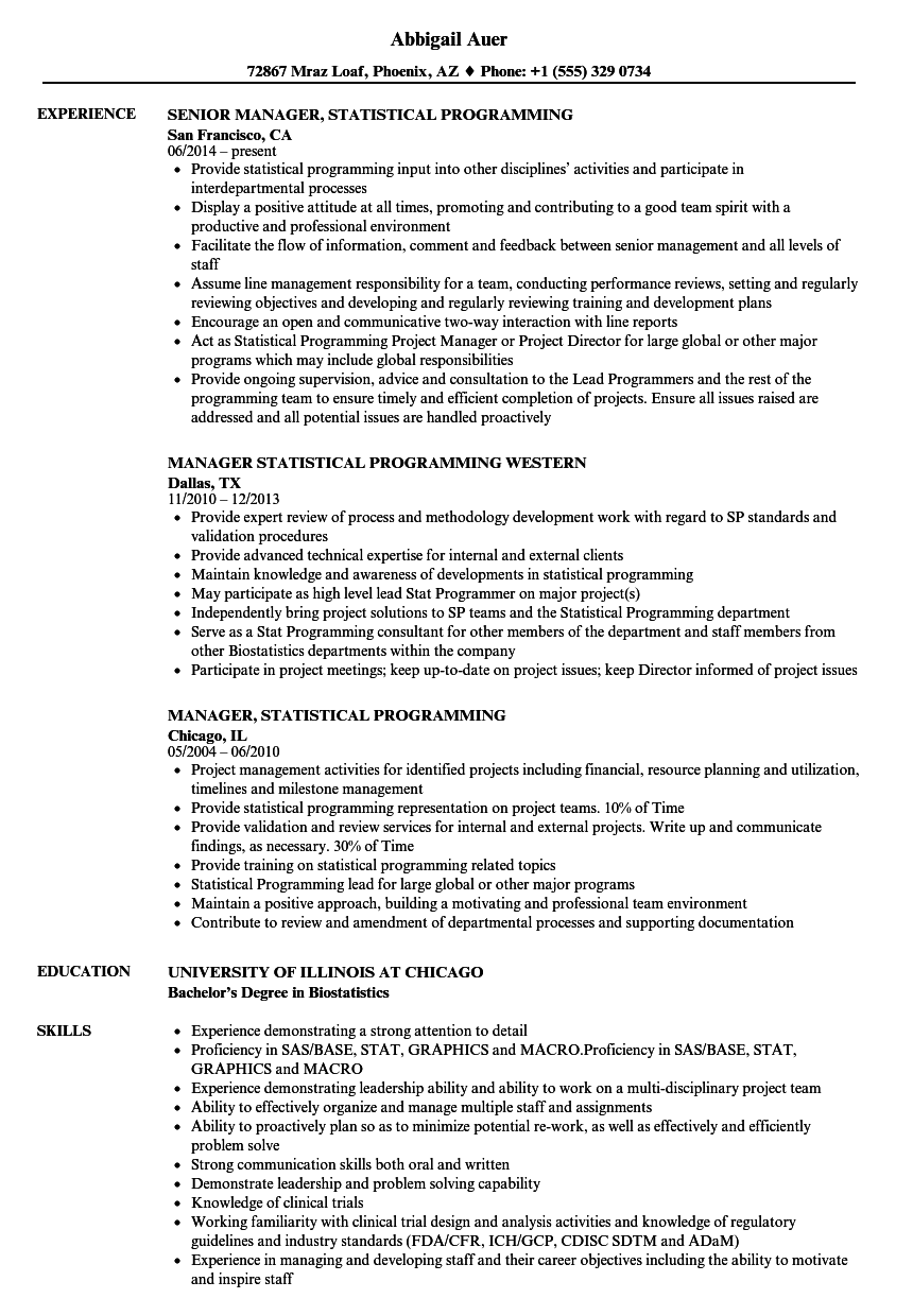 Download Manager, Statistical Programming Resume Sample As Image File  Programming Resume Examples