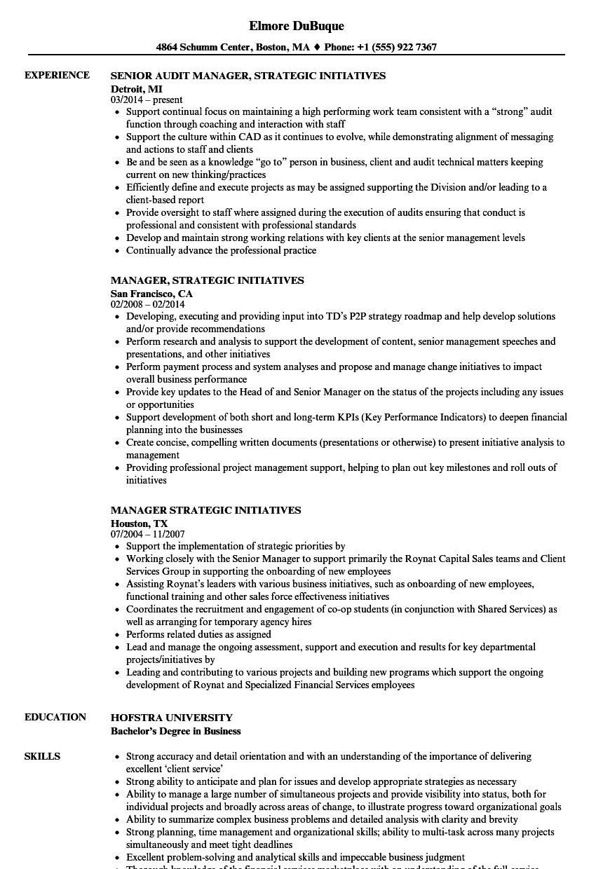Manager Strategic Initiatives Resume Samples Velvet Jobs